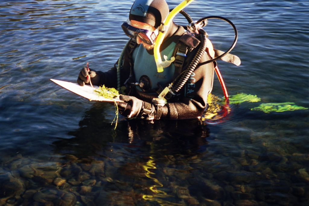 Chris wearing scuba equipment completing his assessment of the ecological condition underwater or submerged plant communities