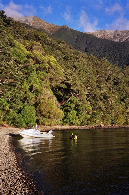 Monitoring ecological condition using submerged aquatic plants, Lake Rotoiti, Nelson Lakes National Park, New Zealand